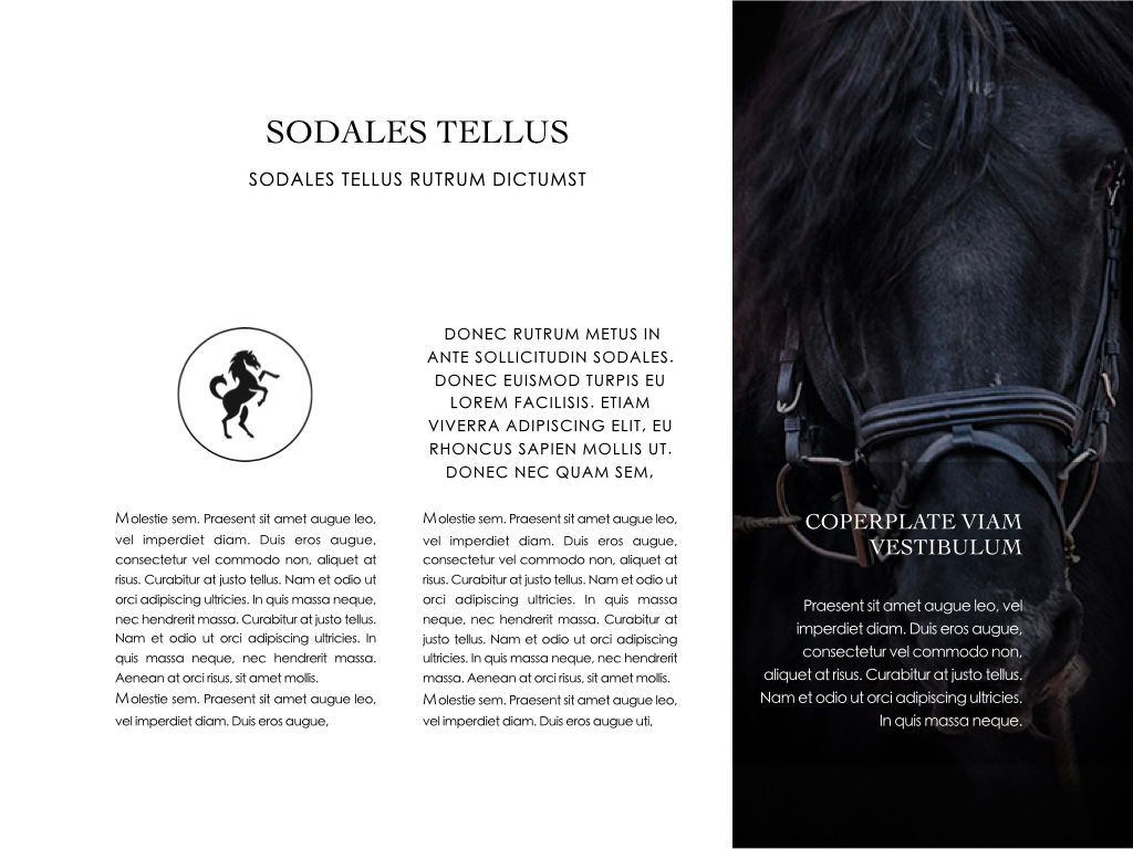 Equestrian Powerpoint Presentation Template, Slide 18, 05103, Presentation Templates — PoweredTemplate.com