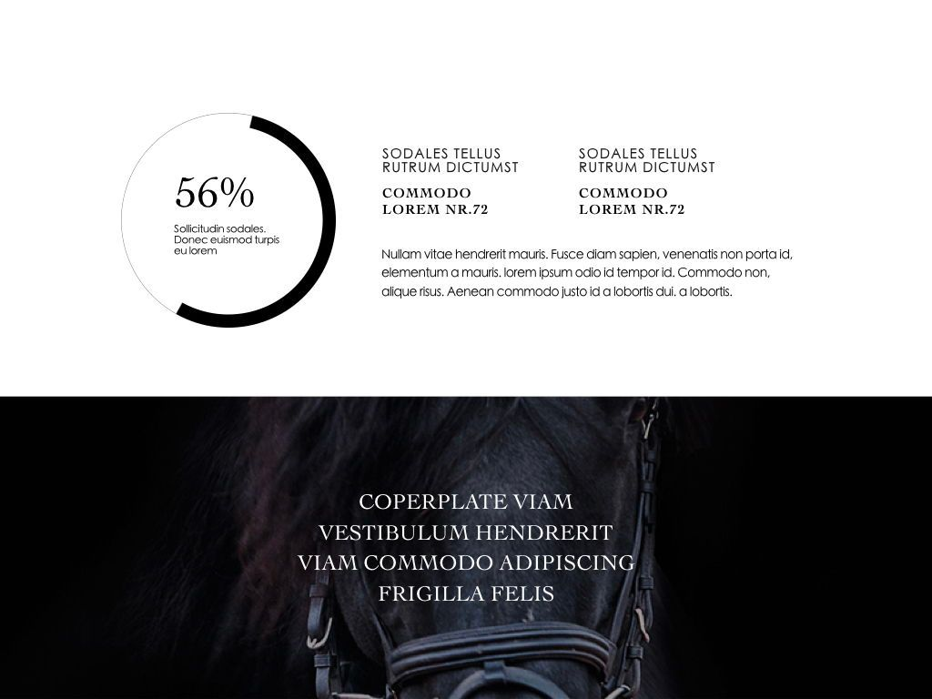 Equestrian Powerpoint Presentation Template, Slide 20, 05103, Presentation Templates — PoweredTemplate.com