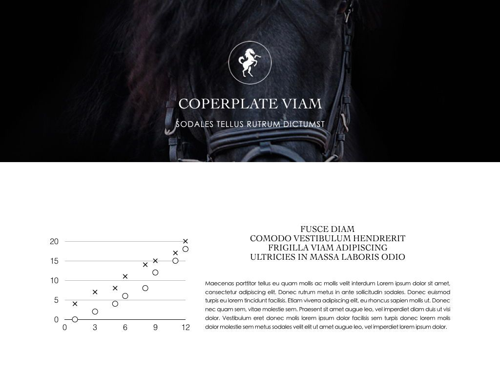 Equestrian Powerpoint Presentation Template, Slide 21, 05103, Presentation Templates — PoweredTemplate.com