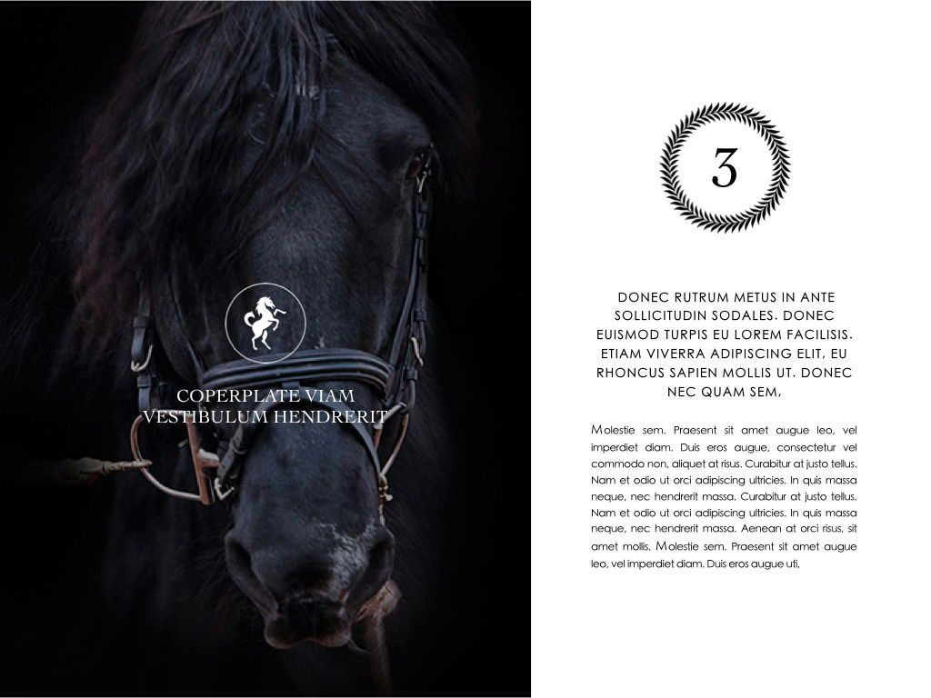 Equestrian Powerpoint Presentation Template, Slide 22, 05103, Presentation Templates — PoweredTemplate.com