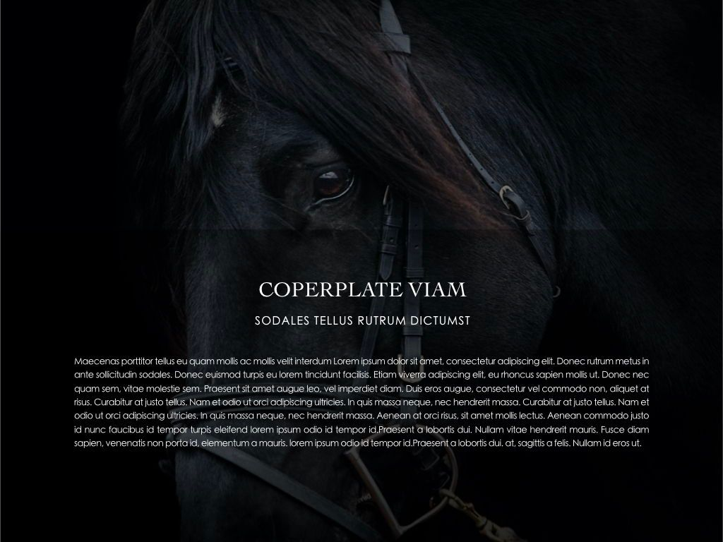 Equestrian Powerpoint Presentation Template, Slide 23, 05103, Presentation Templates — PoweredTemplate.com