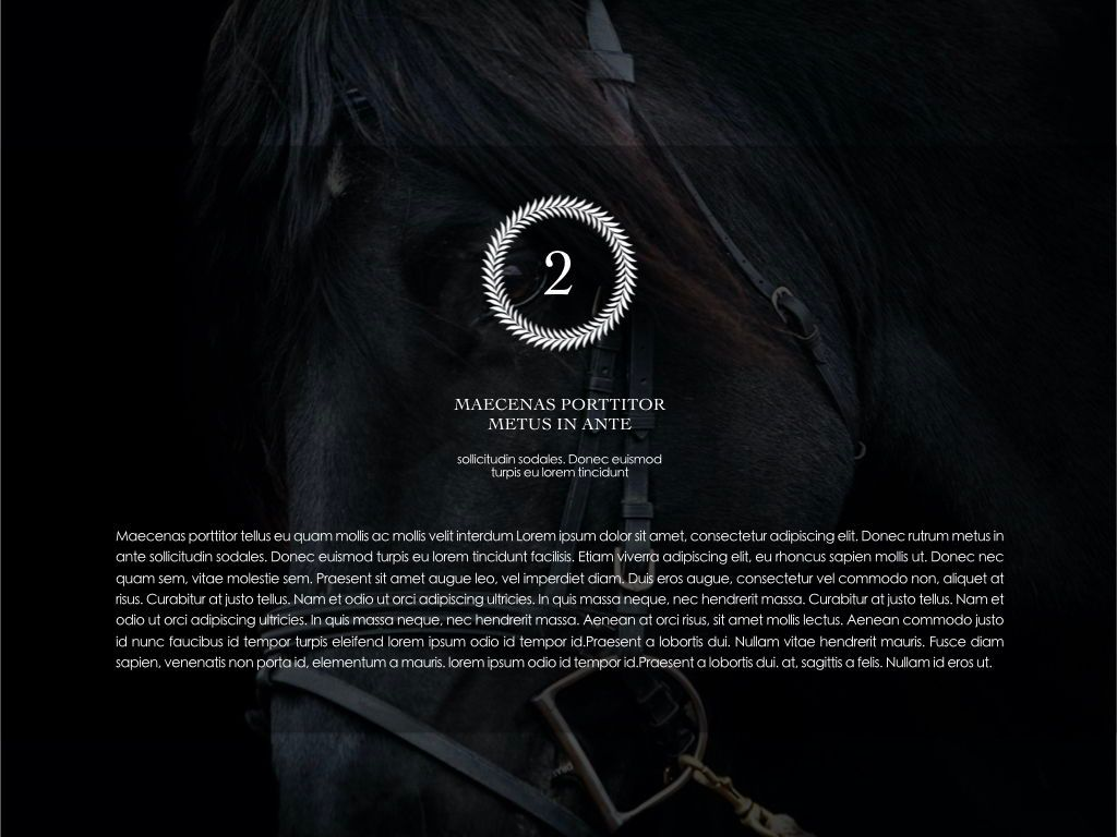 Equestrian Powerpoint Presentation Template, Slide 24, 05103, Presentation Templates — PoweredTemplate.com