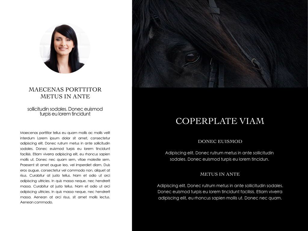 Equestrian Powerpoint Presentation Template, Slide 29, 05103, Presentation Templates — PoweredTemplate.com