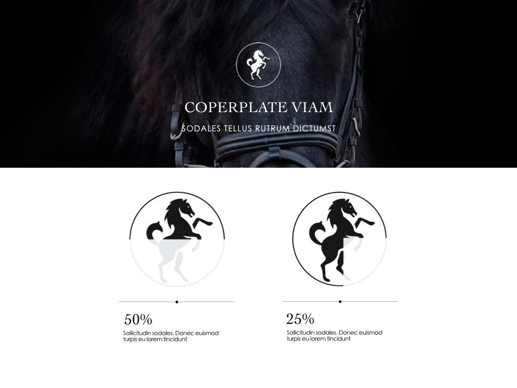 Equestrian Powerpoint Presentation Template, Slide 3, 05103, Presentation Templates — PoweredTemplate.com