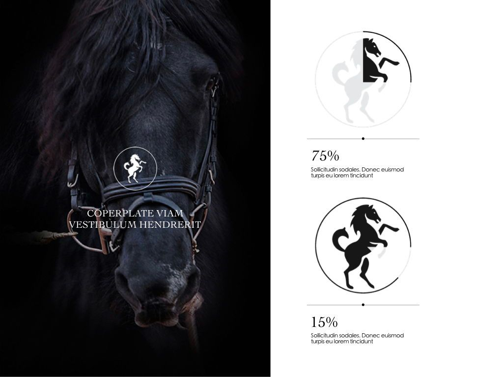 Equestrian Powerpoint Presentation Template, Slide 4, 05103, Presentation Templates — PoweredTemplate.com