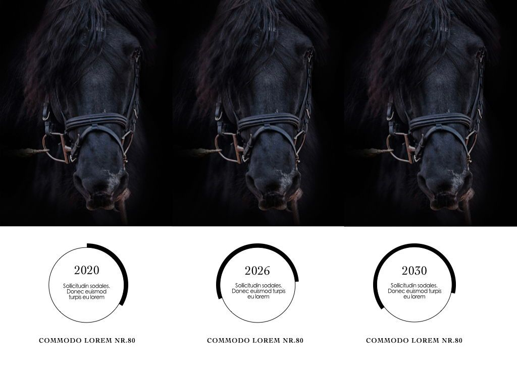 Equestrian Powerpoint Presentation Template, Slide 6, 05103, Presentation Templates — PoweredTemplate.com