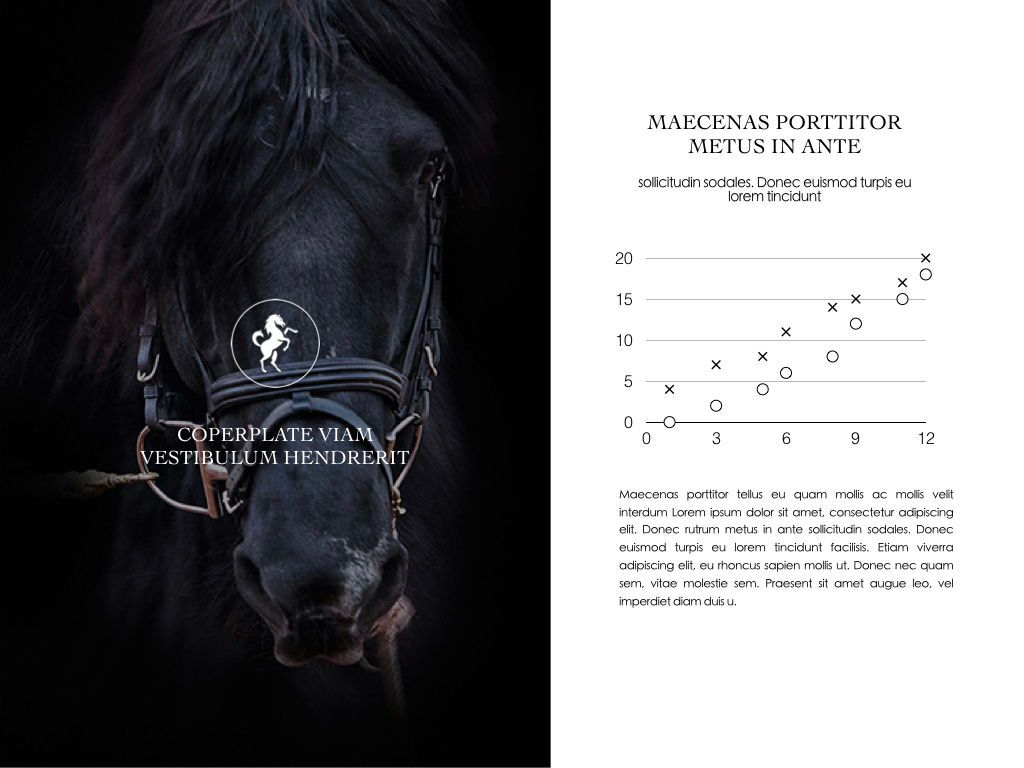 Equestrian Powerpoint Presentation Template, Slide 7, 05103, Presentation Templates — PoweredTemplate.com