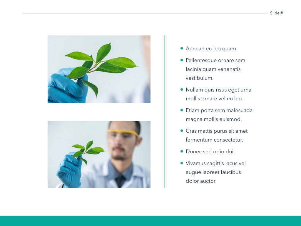 Scientific Report Keynote Theme, Slide 24, 05147, Presentation Templates — PoweredTemplate.com