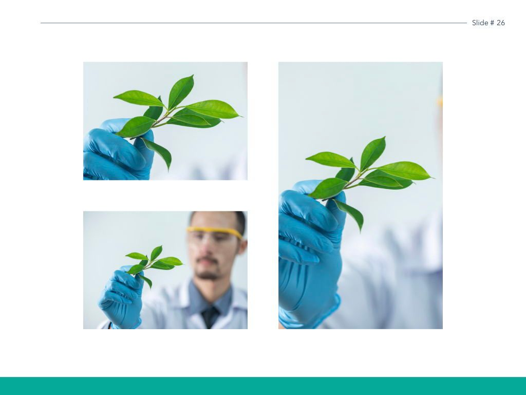 Scientific Report Keynote Theme, Slide 27, 05147, Presentation Templates — PoweredTemplate.com