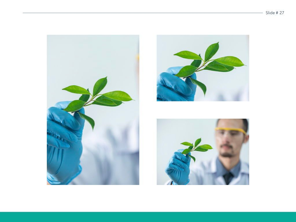 Scientific Report Keynote Theme, Slide 28, 05147, Presentation Templates — PoweredTemplate.com