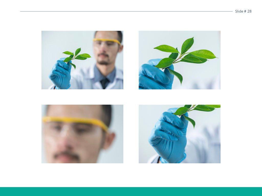 Scientific Report Keynote Theme, Slide 29, 05147, Presentation Templates — PoweredTemplate.com