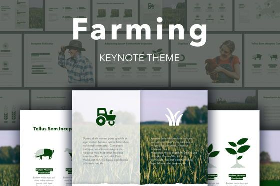 Infographics: Farming Keynote Template #05714
