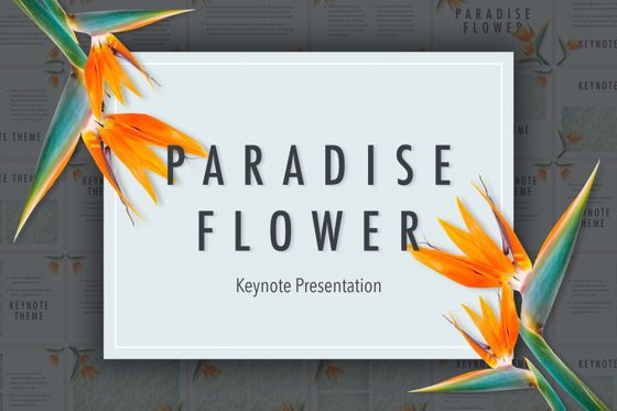 Presentation Templates: Paradise Flower Keynote Template #05775