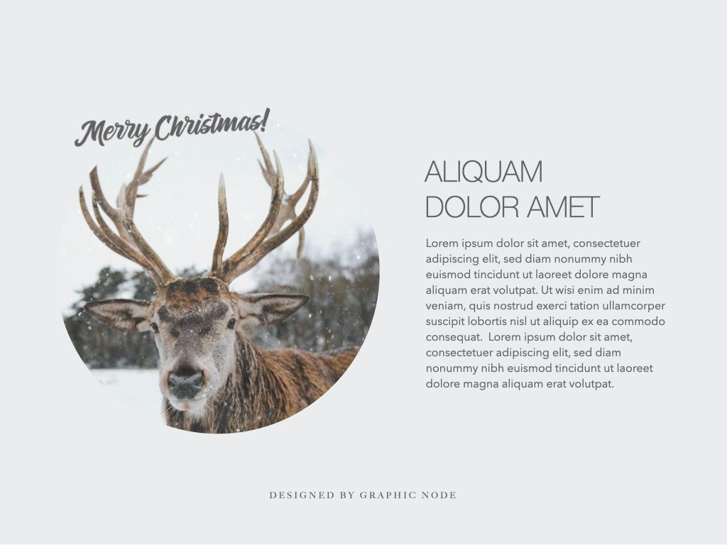 Christmas Domain Powerpoint Presentation Template, Slide 5, 05831, Presentation Templates — PoweredTemplate.com