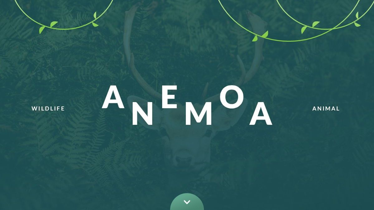 Anemoa - Nature Powerpoint Template, Slide 2, 05894, Icons — PoweredTemplate.com