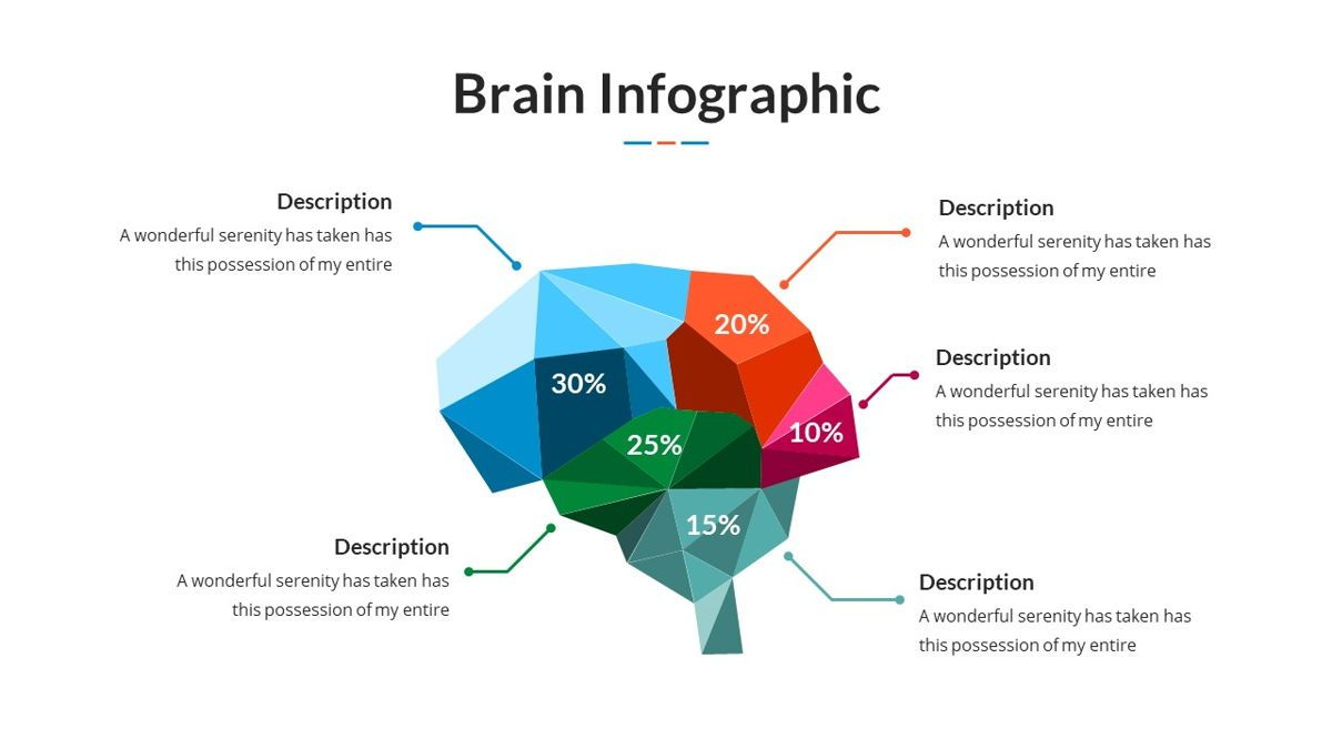 Brain Infographic for Powerpoint Template, Slide 10, 05895, Business Models — PoweredTemplate.com