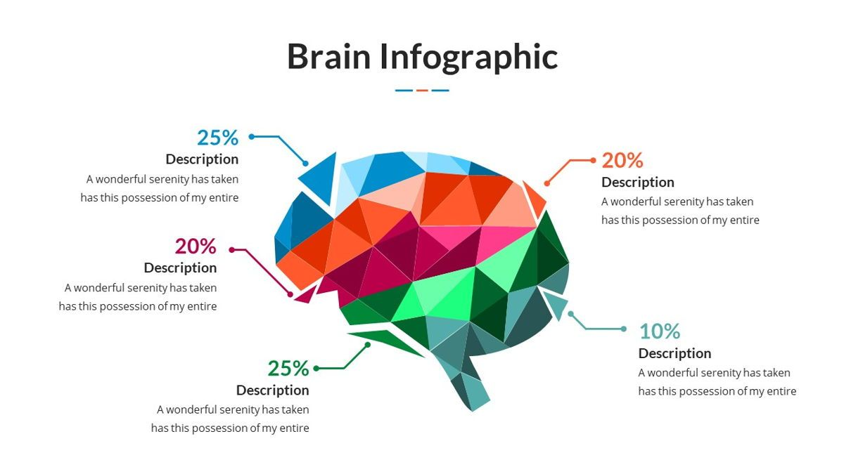 Brain Infographic for Powerpoint Template, Slide 11, 05895, Business Models — PoweredTemplate.com