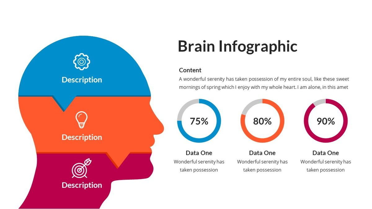 Brain Infographic for Powerpoint Template, Slide 15, 05895, Business Models — PoweredTemplate.com