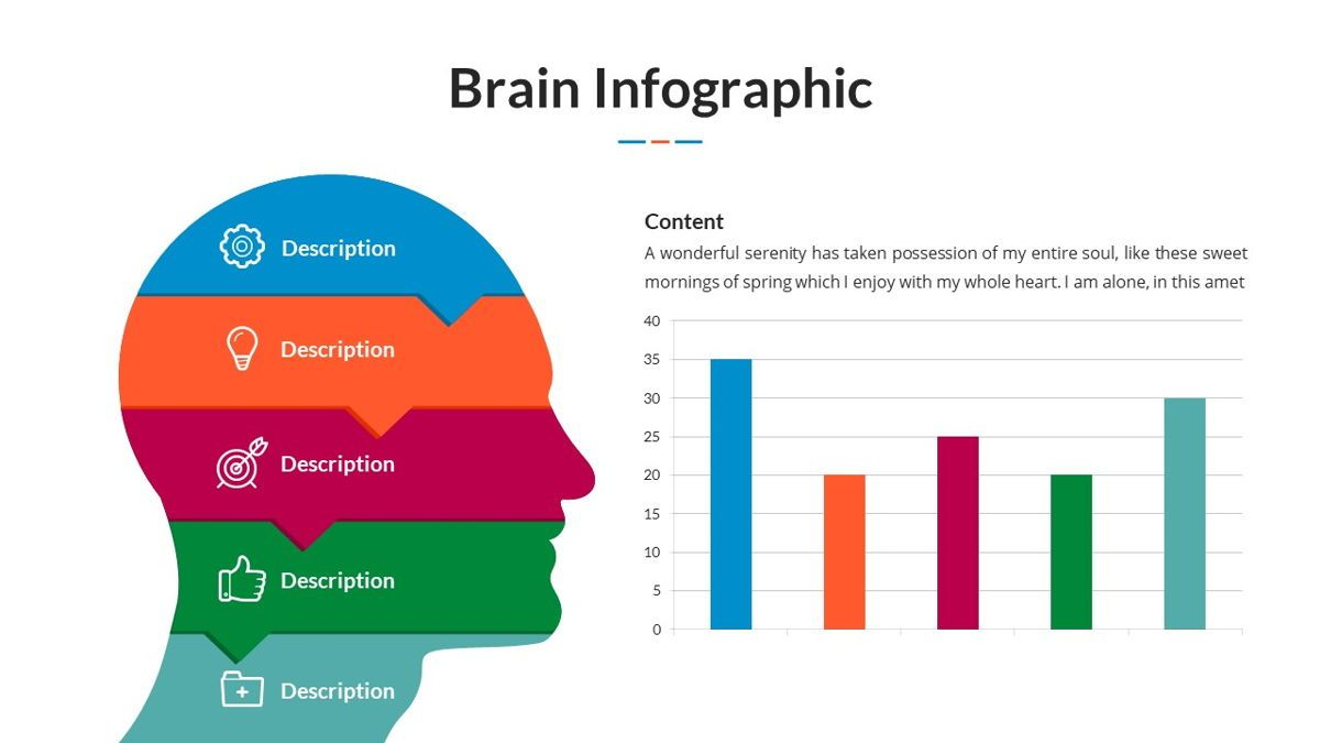 Brain Infographic for Powerpoint Template, Slide 17, 05895, Business Models — PoweredTemplate.com