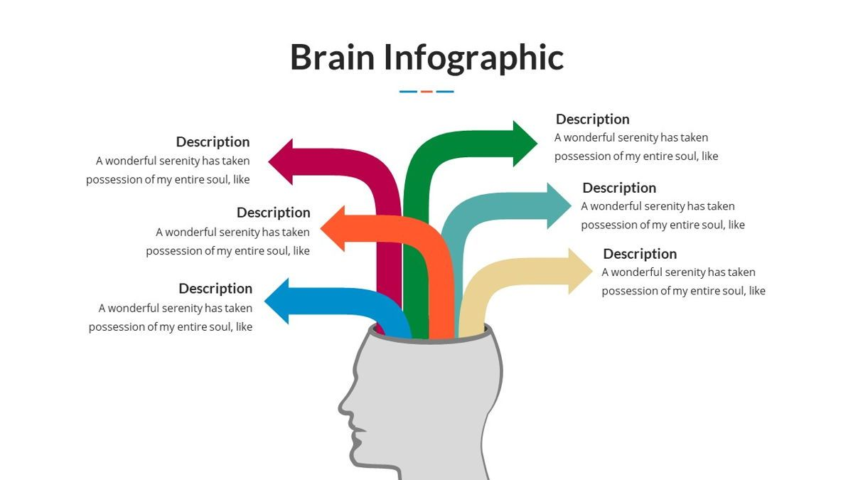 Brain Infographic for Powerpoint Template, Slide 22, 05895, Business Models — PoweredTemplate.com