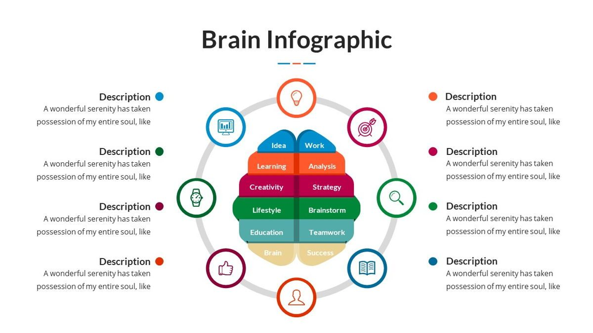 Brain Infographic for Powerpoint Template, Slide 28, 05895, Business Models — PoweredTemplate.com