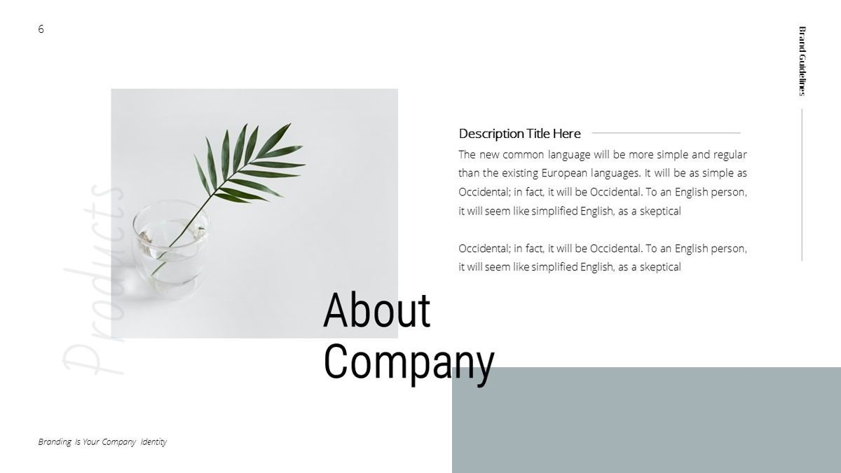 Helena - Brandbook Powerpoint Template, Slide 6, 06237, Modelli di lavoro — PoweredTemplate.com