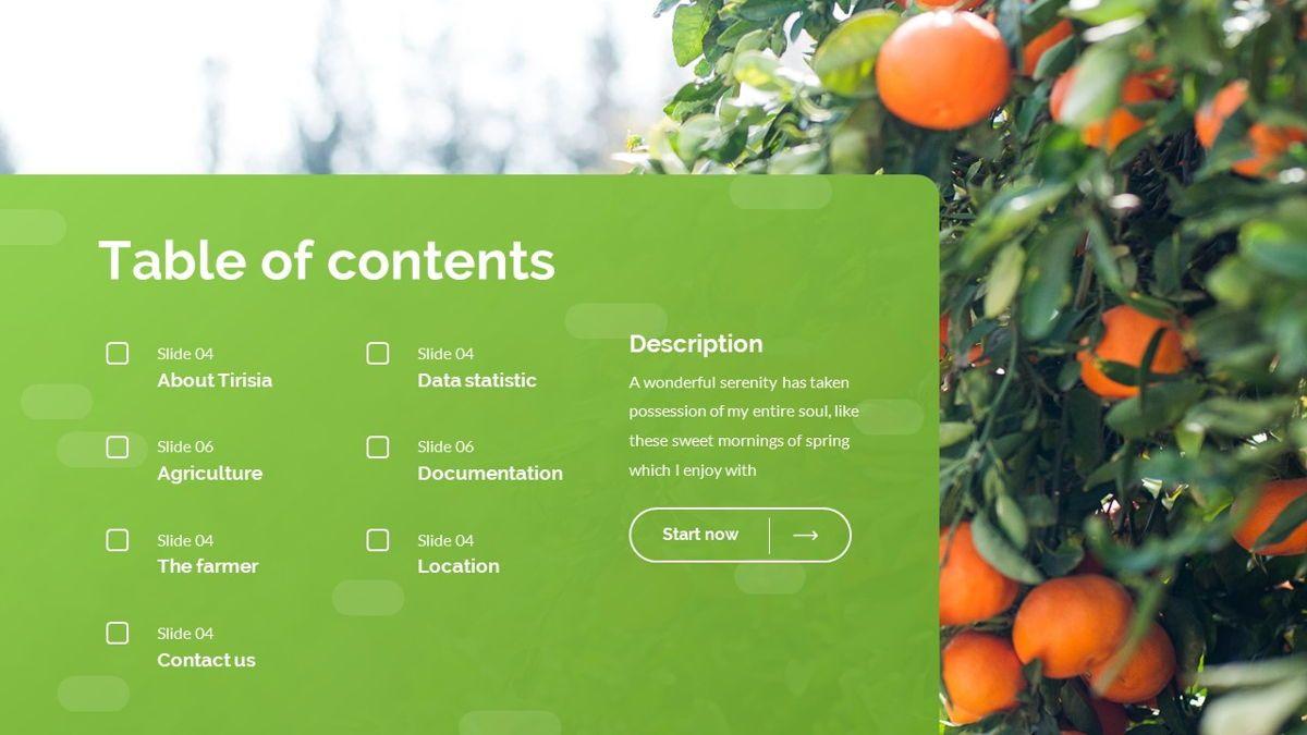 Tirisia - Agriculture Powerpoint Template, Slide 3, 06255, Business Models — PoweredTemplate.com