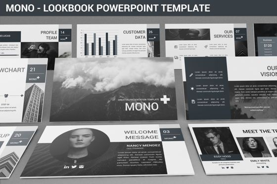 Data Driven Diagrams and Charts: Mono - Lookbook Powerpoint Template #06267