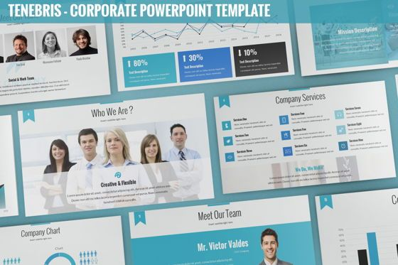 Business Models: Tenebris - Corporate Powerpoint Template #06287