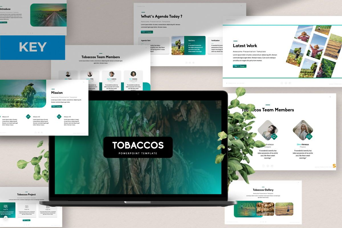 Tobaccos Creative Keynote, 06381, Presentation Templates — PoweredTemplate.com