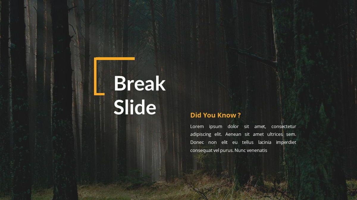 Gratus - Business Powerpoint Template, Slide 13, 06523, Business Models — PoweredTemplate.com