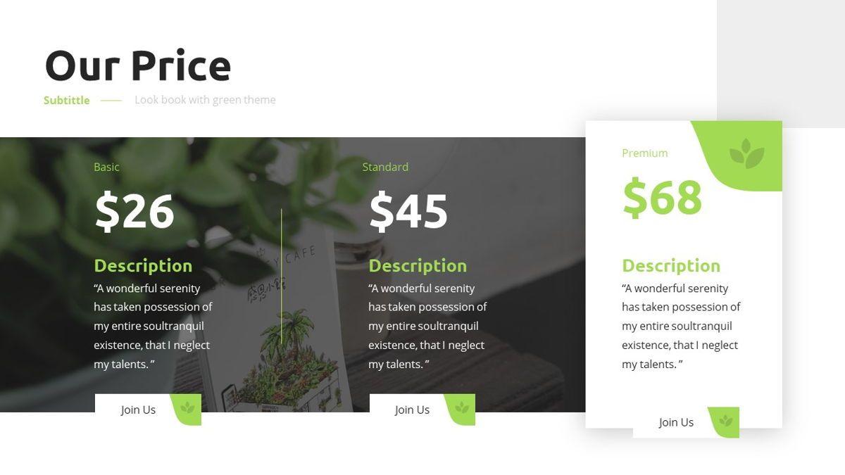 Garnicia - Fresh Powerpoint Template, Slide 13, 06539, Business Models — PoweredTemplate.com