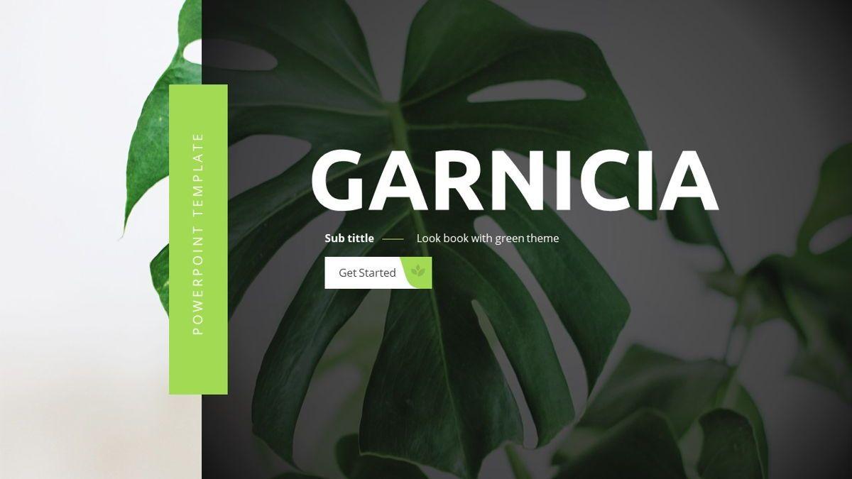 Garnicia - Fresh Powerpoint Template, Slide 2, 06539, Business Models — PoweredTemplate.com