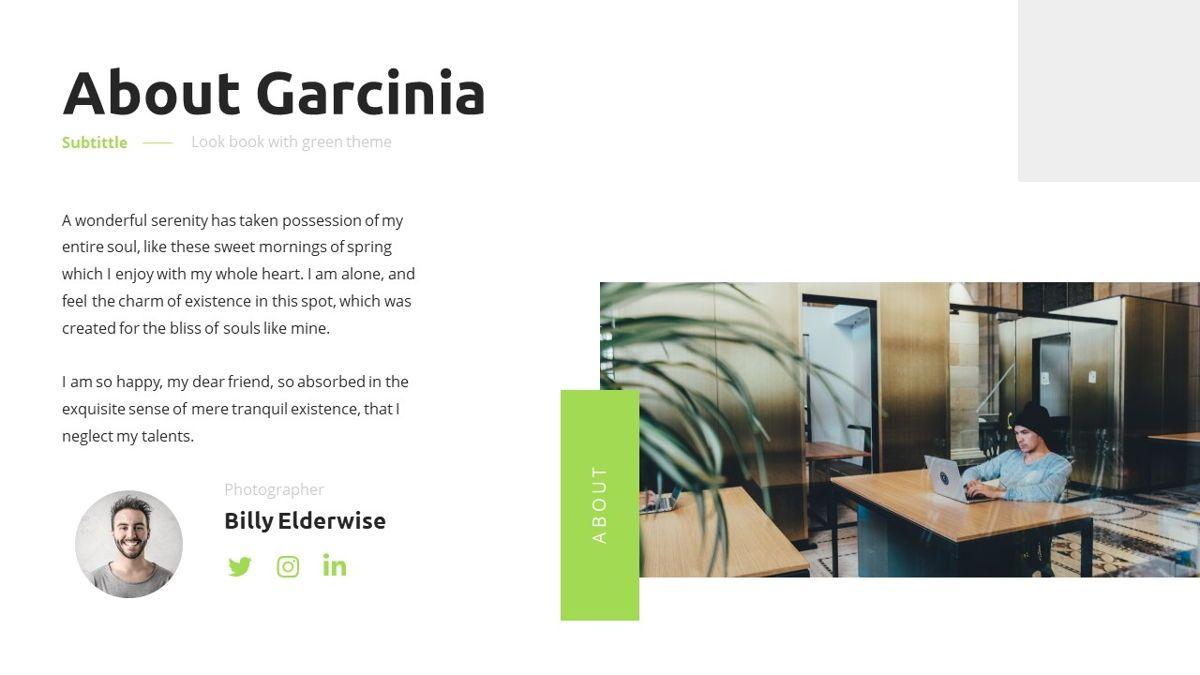 Garnicia - Fresh Powerpoint Template, Slide 6, 06539, Business Models — PoweredTemplate.com
