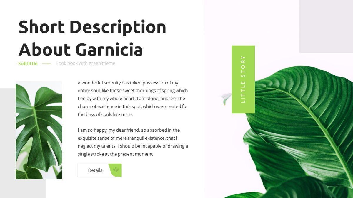 Garnicia - Fresh Powerpoint Template, Slide 7, 06539, Business Models — PoweredTemplate.com