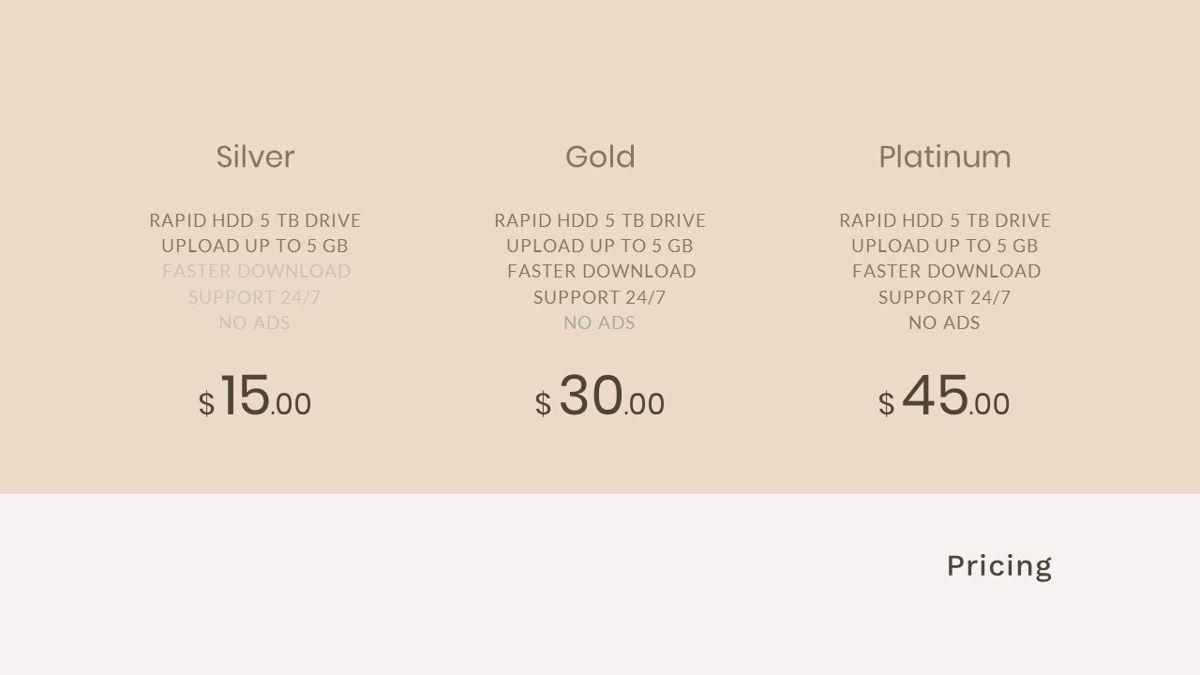 Gadies – Creative Business Elegant Google Slides Template, Slide 37, 06845, Presentation Templates — PoweredTemplate.com