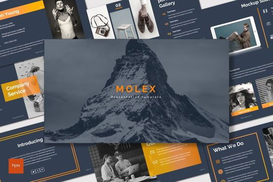 Presentation Templates: Molex - PowerPoint Template #06927