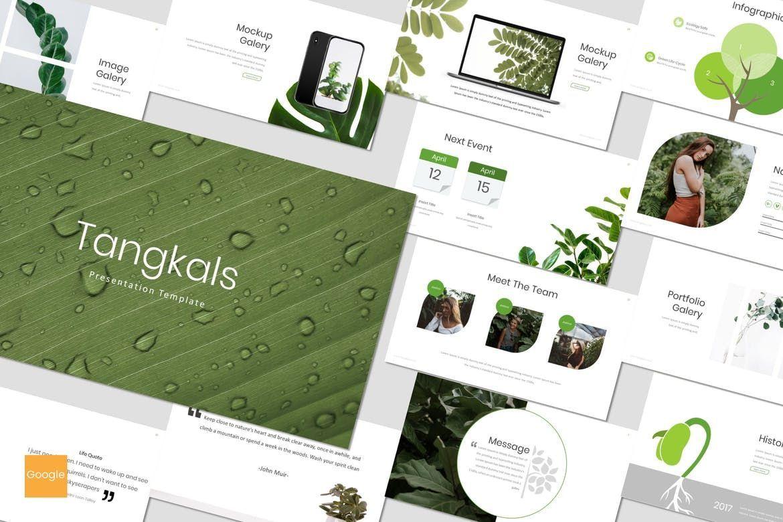 Tangkals - Google Slides Template, 06952, Presentation Templates — PoweredTemplate.com
