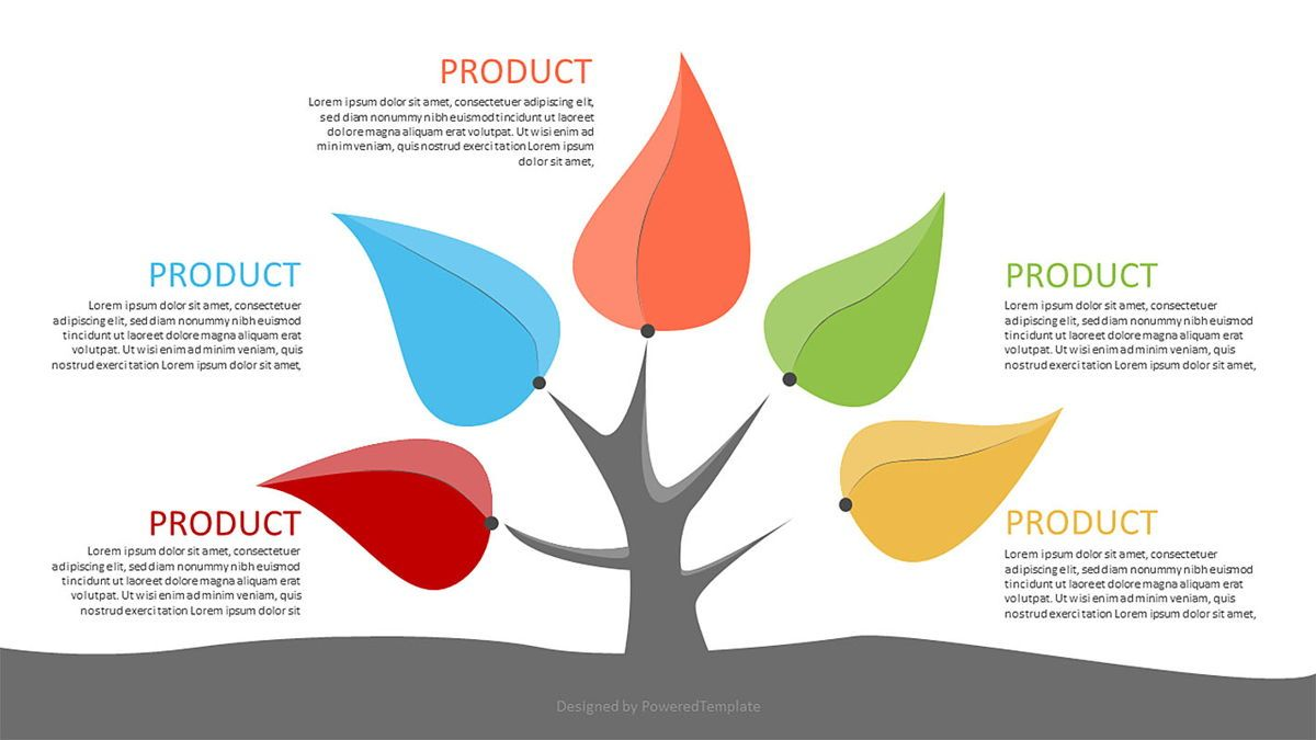 Five Product Options Infographics, 06972, Infographics — PoweredTemplate.com