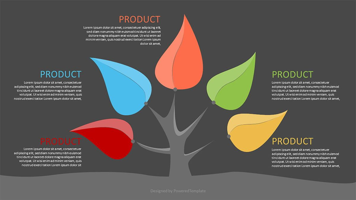 Five Product Options Infographics, Slide 2, 06972, Infographics — PoweredTemplate.com
