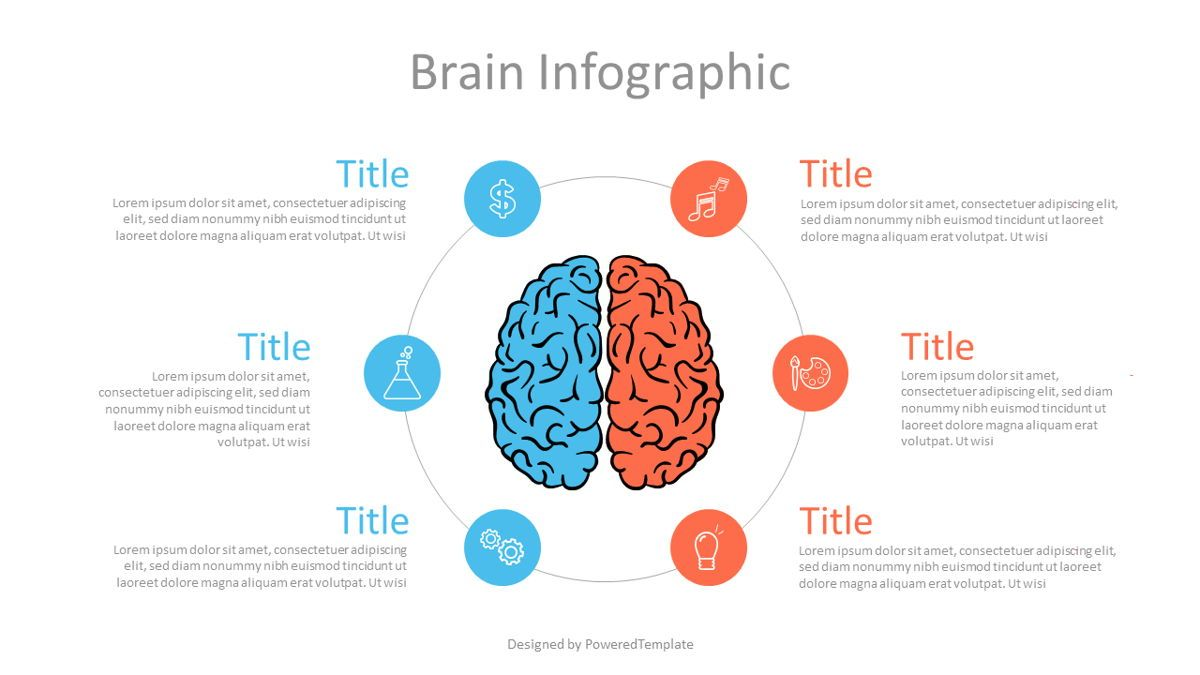 Hemispheres of Brain Infographic, 07112, Infographics — PoweredTemplate.com