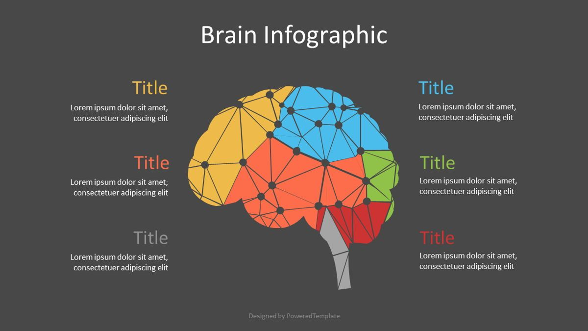 Cybernetic Brain Lobes Infographic, Slide 2, 07113, Infographics — PoweredTemplate.com