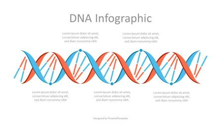 Education Charts and Diagrams: Abstract DNA Infographic #07122