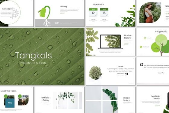 Presentation Templates: Tangkals - Keynote Template #07186