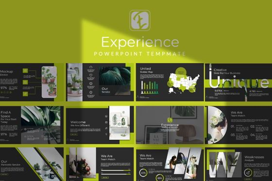 Presentation Templates: Experience Business Powerpoint #07296