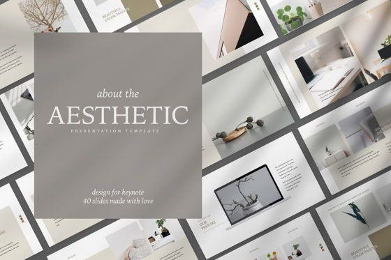 Presentation Templates: Aesthetic Brand Powerpoint #07489