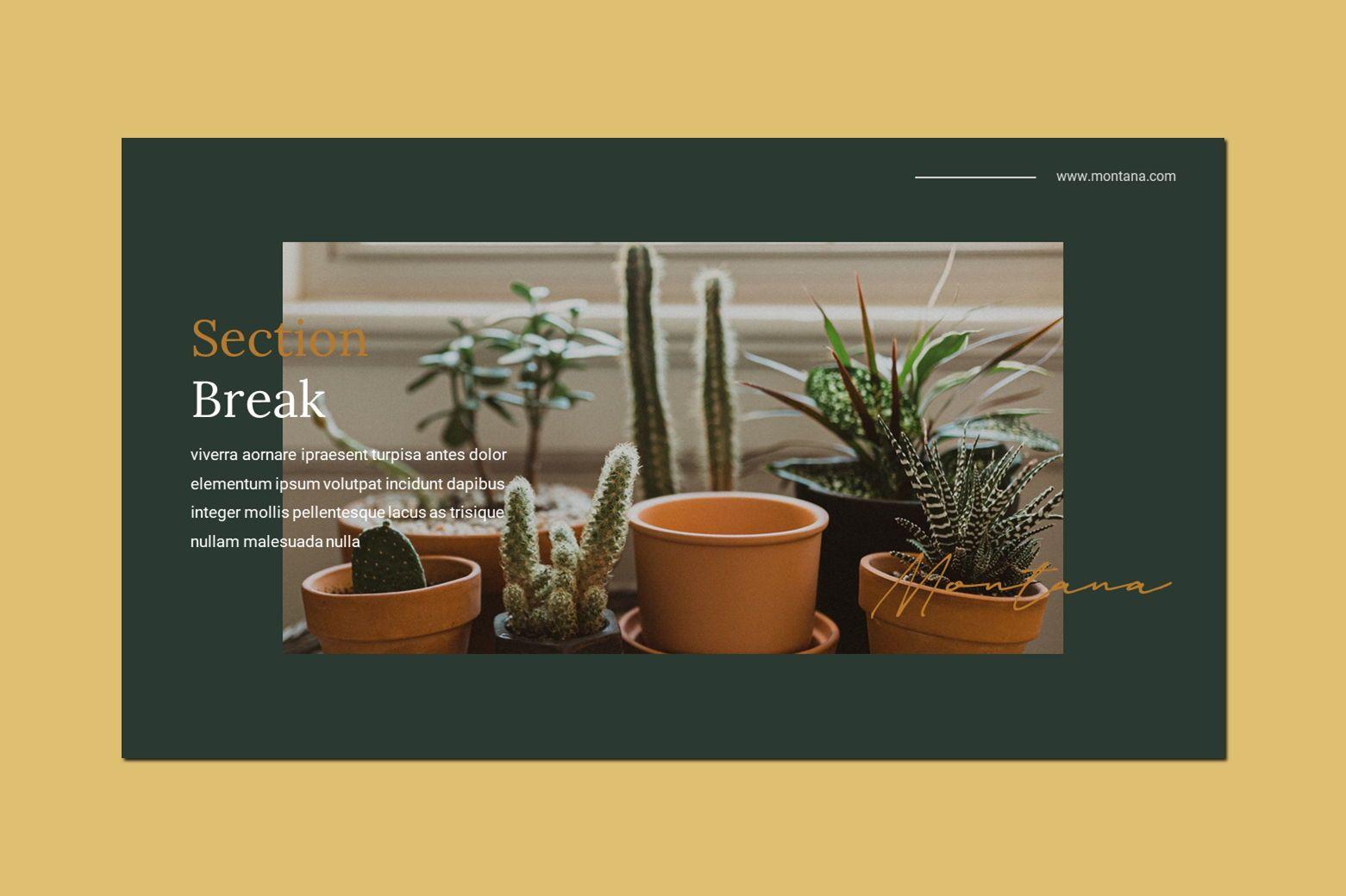 Montana - Google Slides Template, Slide 4, 07562, Presentation Templates — PoweredTemplate.com