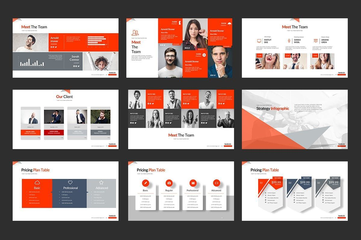 Tahes Co PowerPoint Template, Slide 7, 07733, Business Models — PoweredTemplate.com
