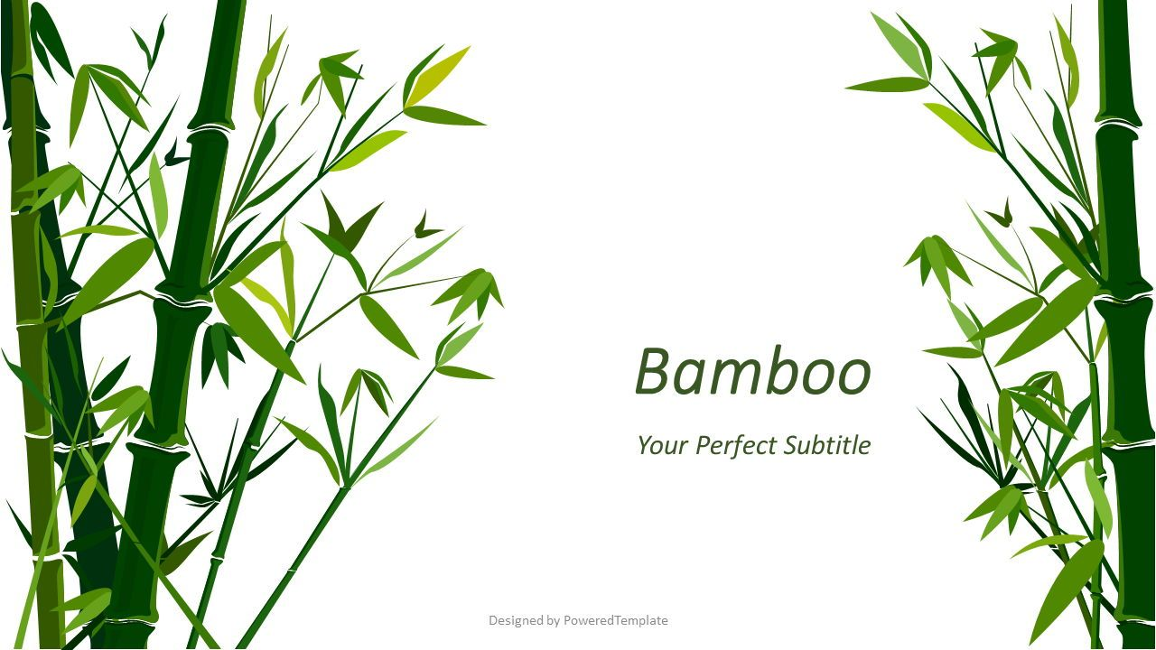 Green Bamboo Forest Background, 07755, Presentation Templates — PoweredTemplate.com