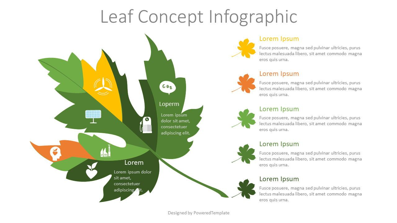 Leaf Concept Infographic, 07793, Infographics — PoweredTemplate.com
